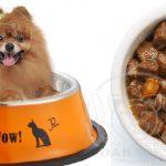 عرضه انواع غذای سگ 3 ماهه