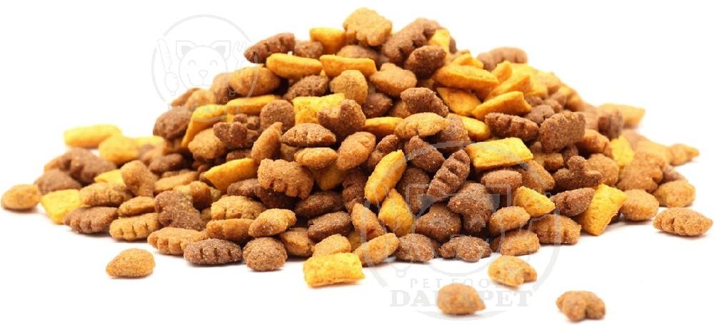 انواع غذای خشک گربه از نظر شکل ظاهری