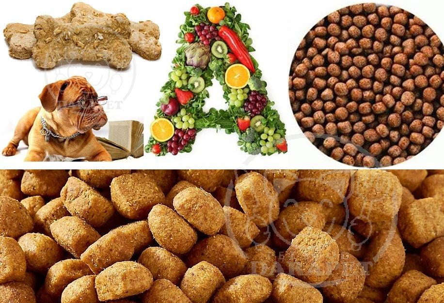 نکات مهم در تهیه خوراک خشک سگ چیست؟