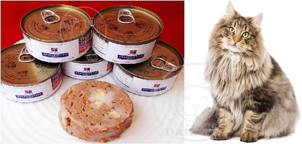 پخش سراسری خوراک گربه خانگی