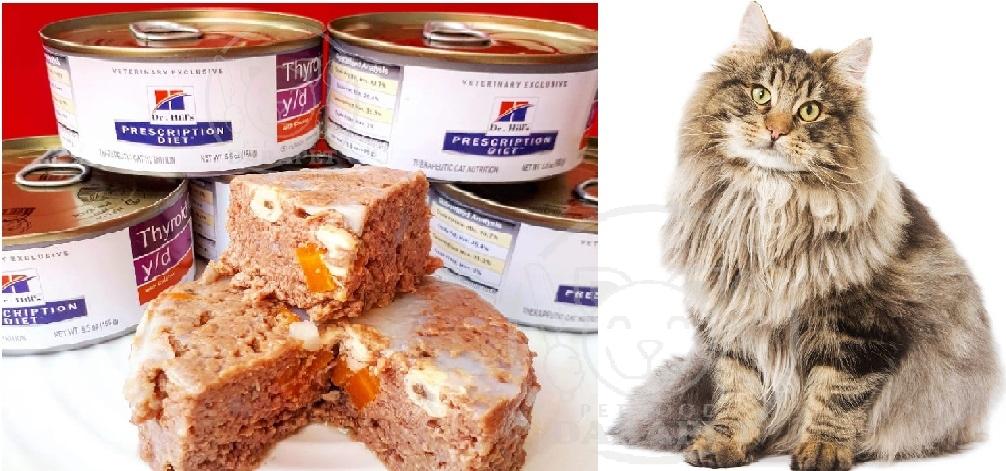 بازار خرید خوراک عمده گربه