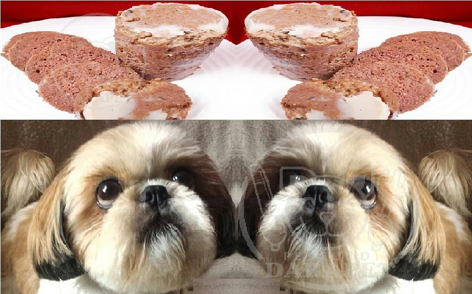 خرید مستقیم غذای سگ اشپیتز درجه یک
