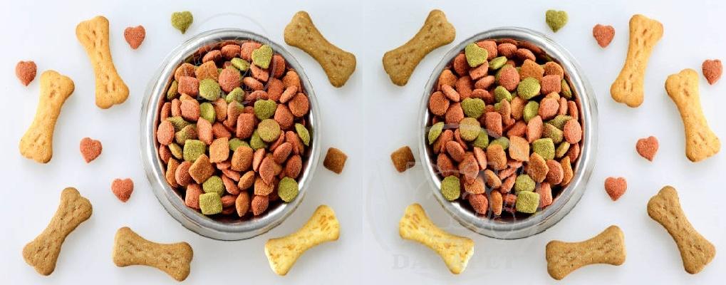 شرکت بازرگانی غذای خشک سگ
