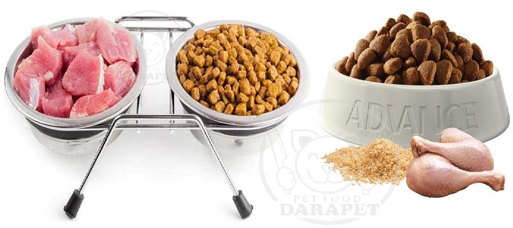 مواد تشکیل دهنده غذای خشک سگ چیست؟