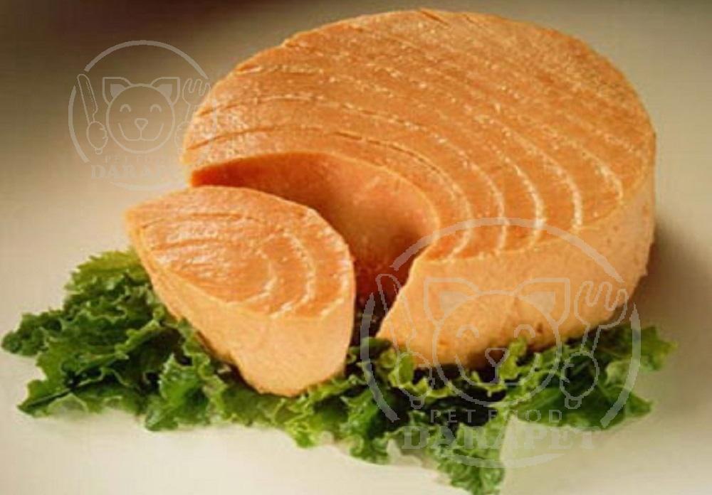 خصوصیات ویژه کنسرو ماهی برای گربه