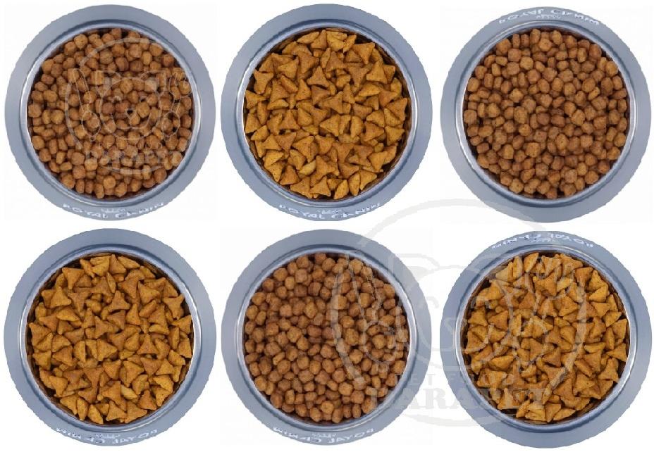 قیمت مناسب خوراک خشک سگ