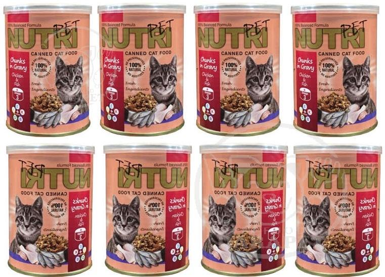 شرکت ارائه کنسرو بچه گربه ایرانی