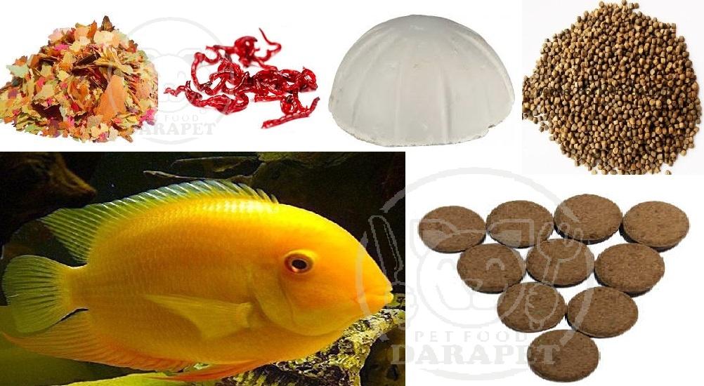 سفارش انواع خوراک ماهی آکواریومی