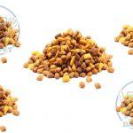 فروش کلی غذا خشک گربه