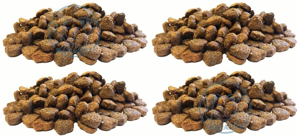 بازار فروش غذای سگ خانگی