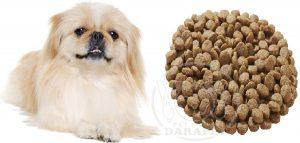 توزیع مستقیم غذای سگ خانگی