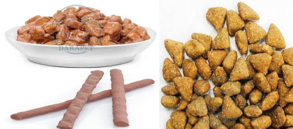 معرفی انواع غذای گربه