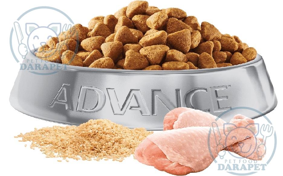 غذای خشک سگ چه مشخصاتی دارد؟