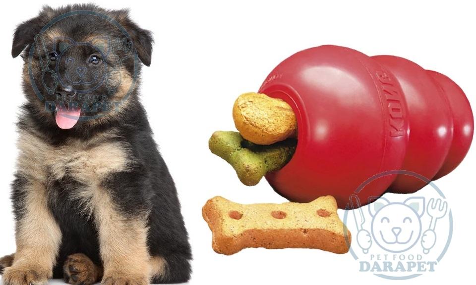 غذای تشویقی سگ چیست؟
