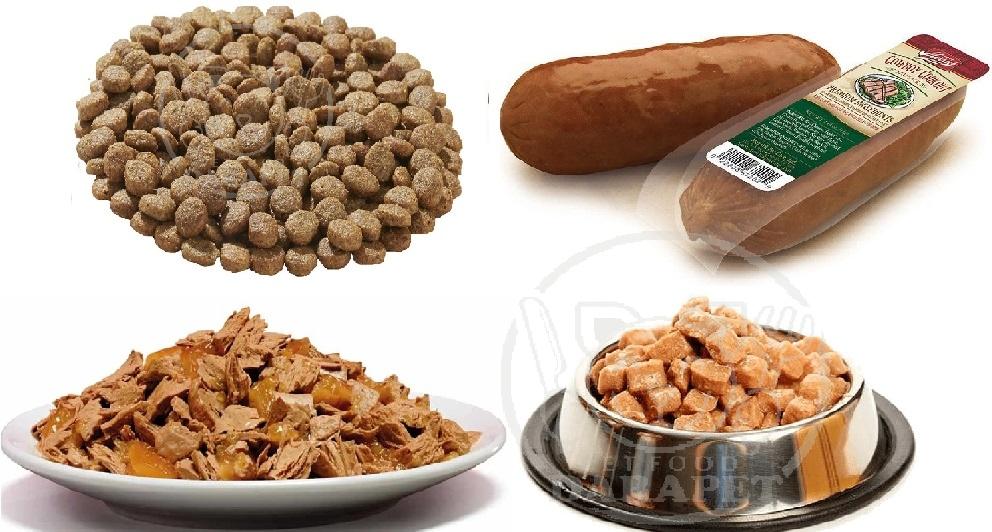 معرفی انواع غذای سگ