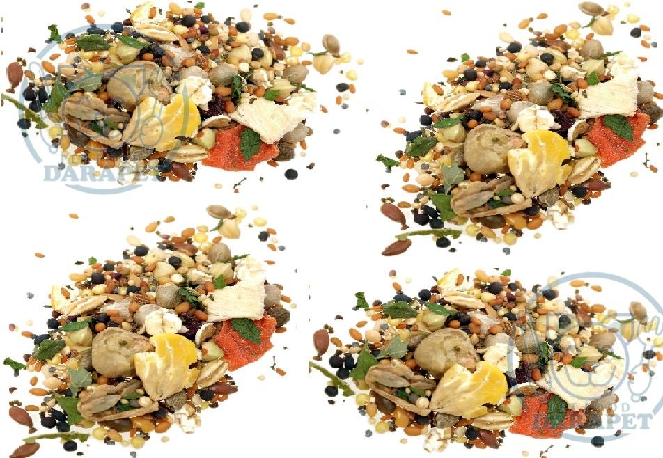 تولید غذای مخصوص همستر خانگی