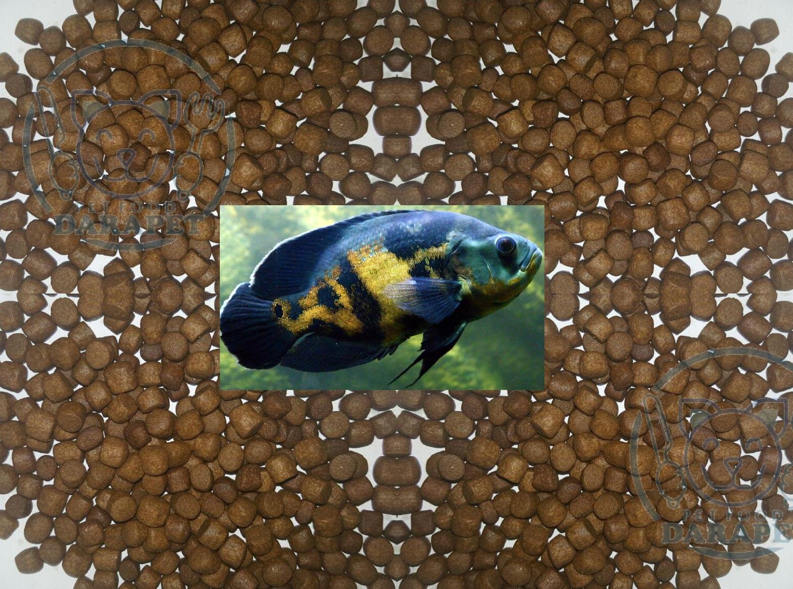 فروش فوق العاده غذای ماهی اکواریومی