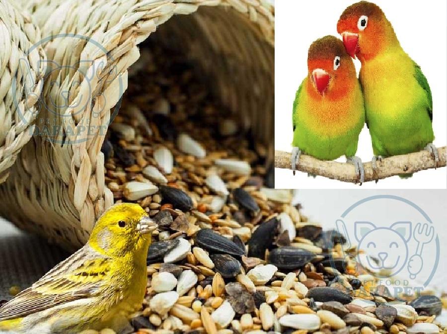 صادرات غذای پرندگان کوچک زینتی