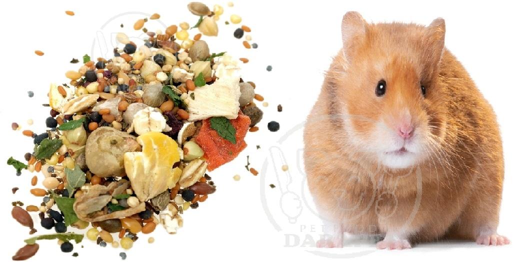 صادر کننده غذای مخصوص همستر خانگی