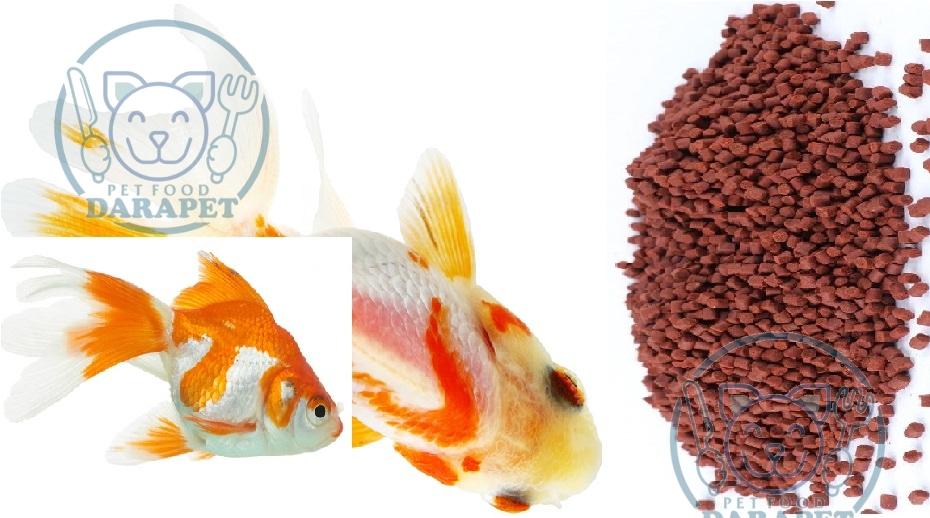 تولید کننده غذای ماهی زینتی