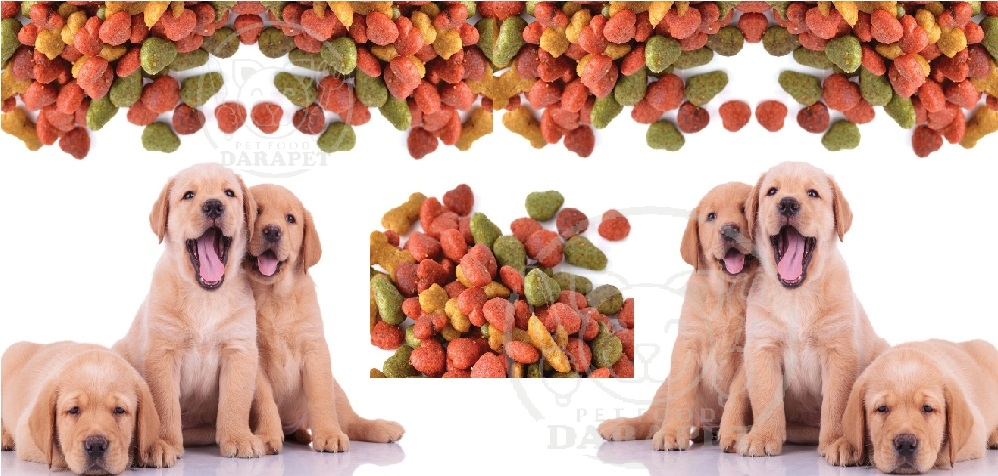 صادرات بهترین غذای خشک توله سگ