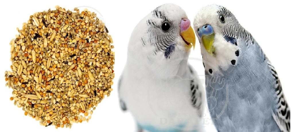 فروش غذای مرغ عشق