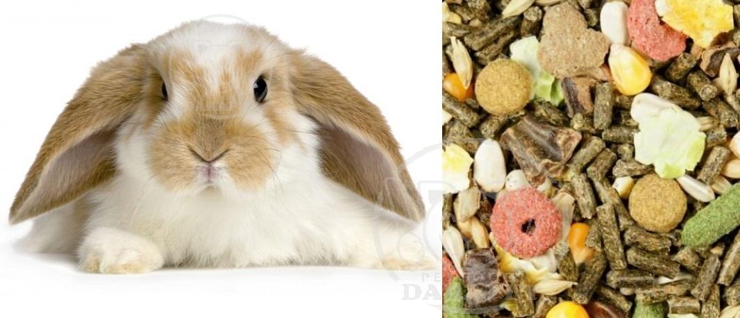 با غذای مخلوط خرگوش آشنا شوید