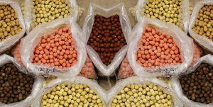 فروشنده عمده خوراک ماهی کپور ایرانی