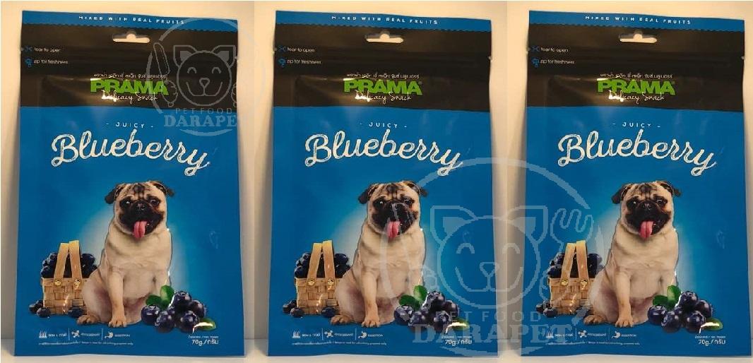 صادرات تشویقی سگ طعم بلوبری