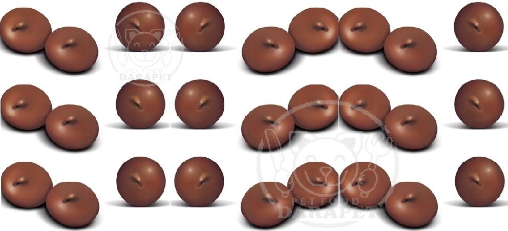 عوامل موثر بر کیفیت تشویقی سگ شکلاتی