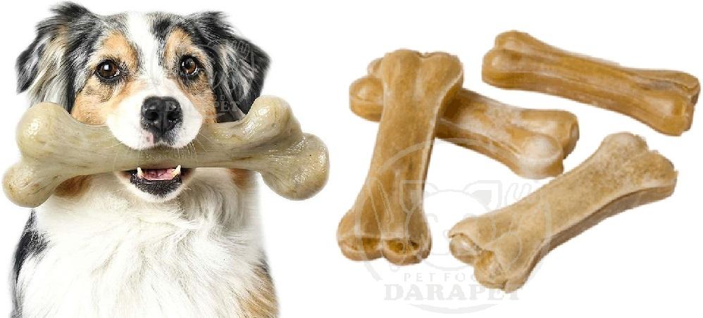بررسی مشخصات تشویقی سگ استخوان