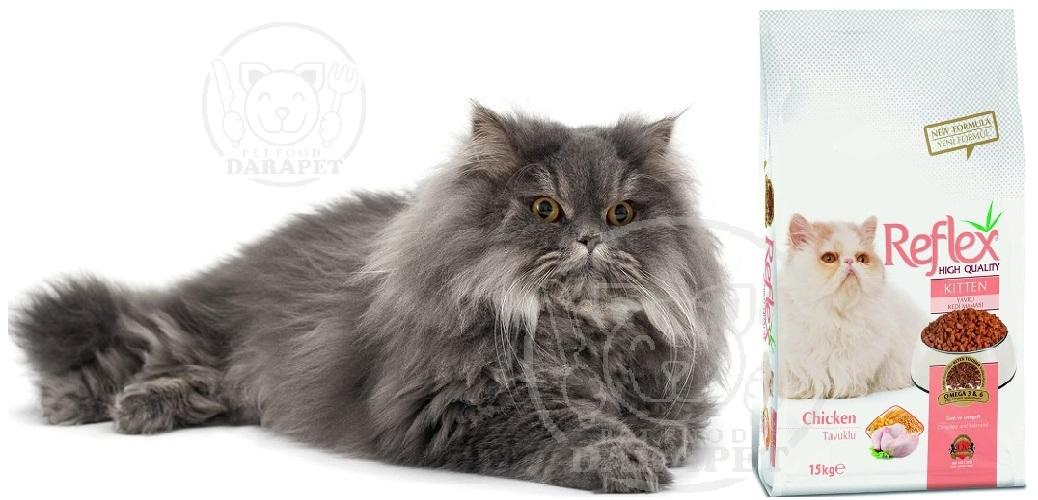 نمایندگی فروش غذا گربه پرشین