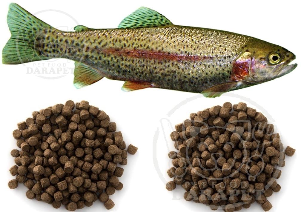 قیمت عمده خوراک پرواری ماهی قزل آلا