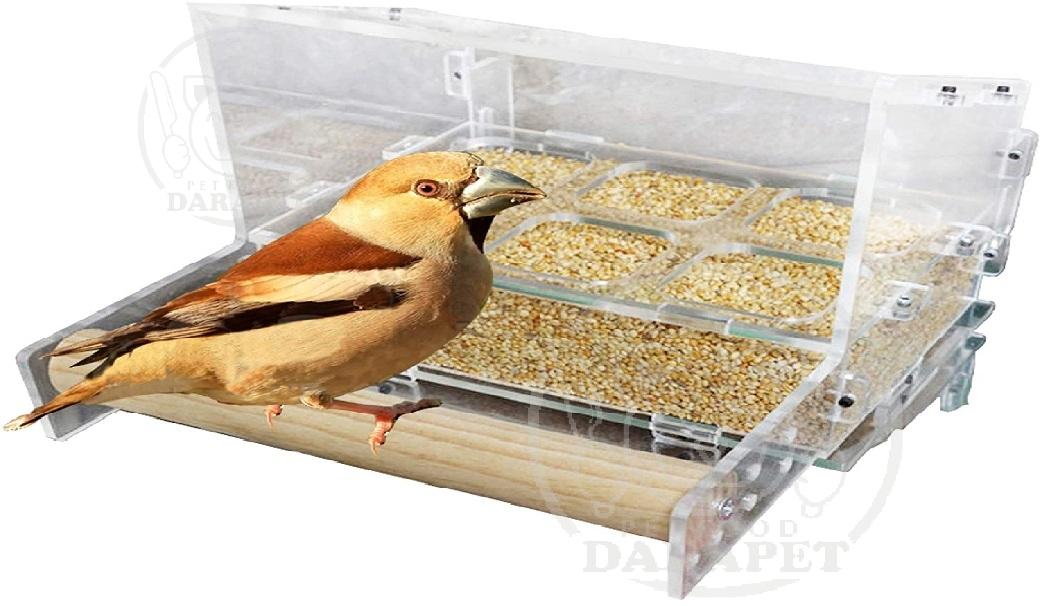 خرید کلی غذا پرندگان خانگی