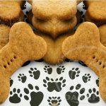 شرکت صادرات تشویقی سگ بیسکویت
