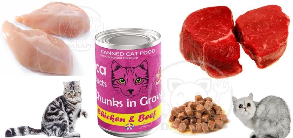 عوامل موثر برای تولید کنسرو گربه