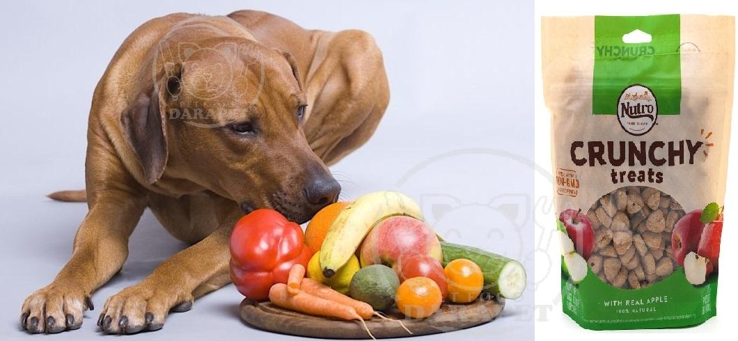 بررسی مشخصات تشویقی سگ میوه ای