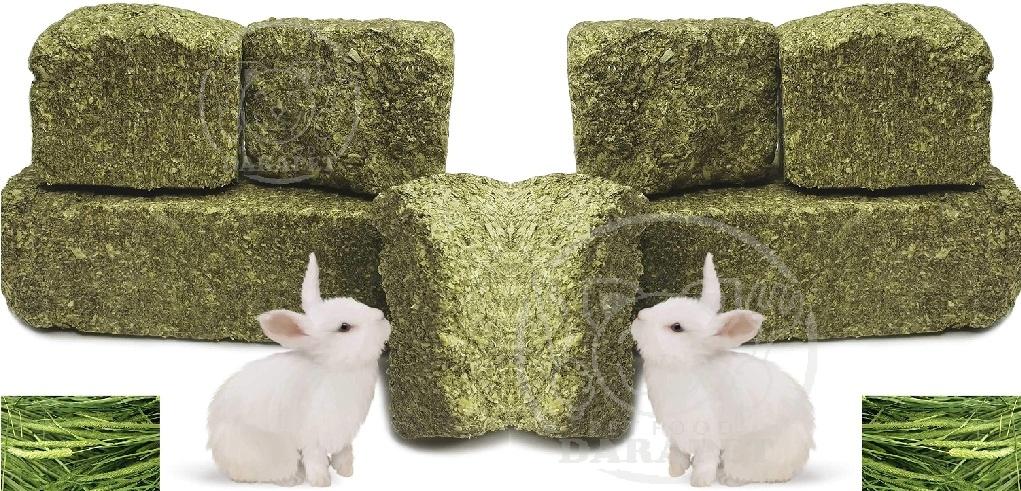 فروش عمده غذا خشک خرگوش
