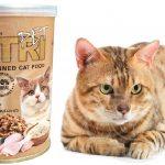 فروشنده عمده کنسرو برای گربه بالغ