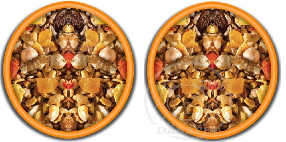 خرید خوراک پرندگان زینتی با قیمت مناسب