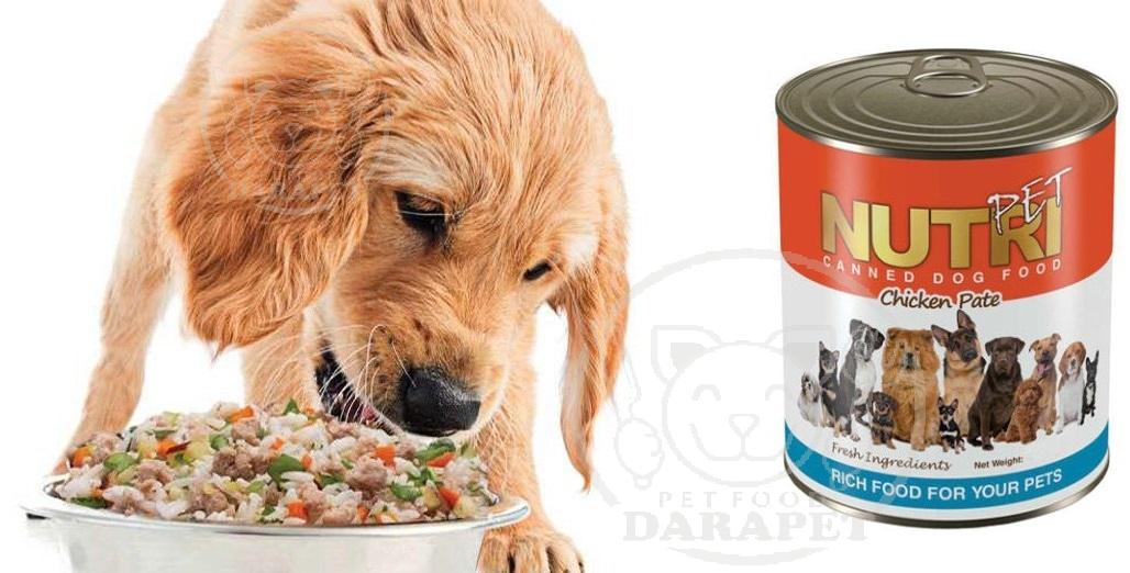 کیفیت مرغوب کنسرو سگ مدل سبزی