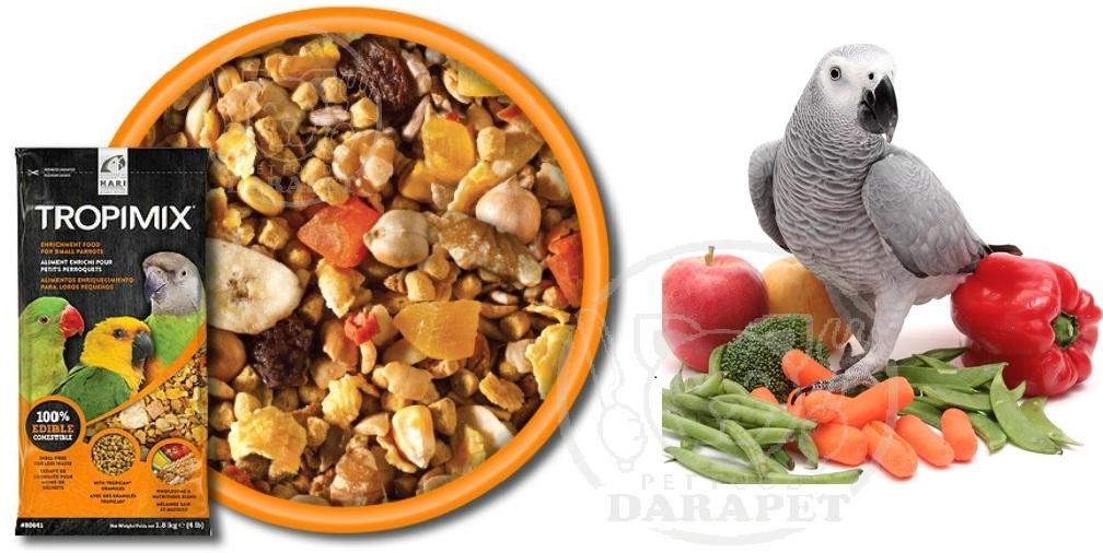 راهنمای انتخاب خوراک برای پرندگان زینتی