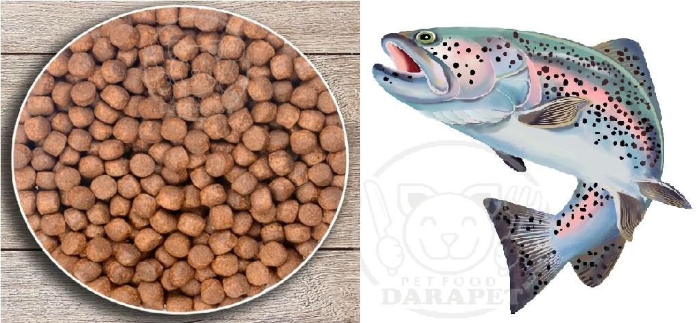 پخش عمده غذا برای ماهی پرورشی قزل الا
