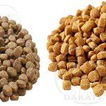 پخش انواع غذای خشک مخصوص سگ ایرانی