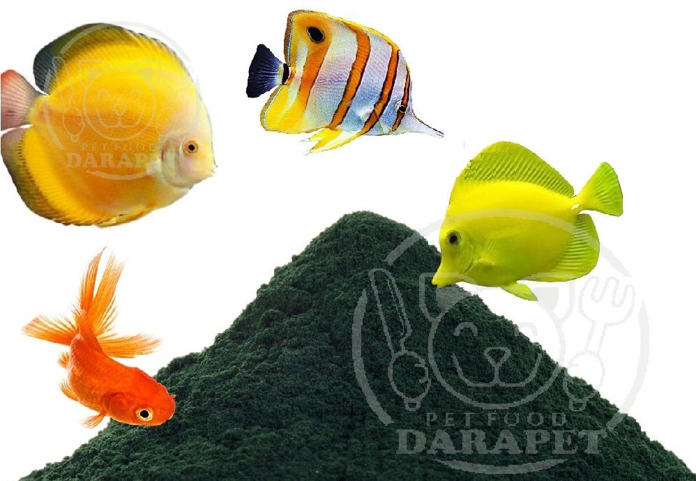 قیمت رقابتی خوراک آماده اسپیرولینا برای ماهی