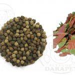 عرضه انواع غذای ماهی آکواریومی