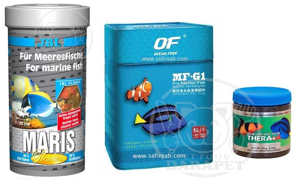 انواع مختلف غذای ماهی آب شور