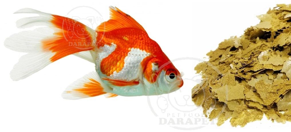 جزئیاتی درباره غذای ماهی آب شیرین