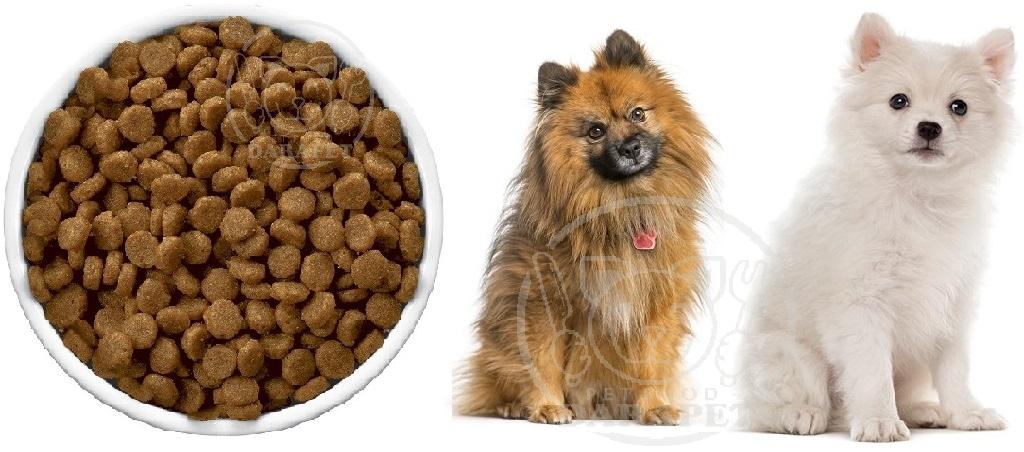 کیفیت مناسب غذا خشک سگ ارزان خانگی