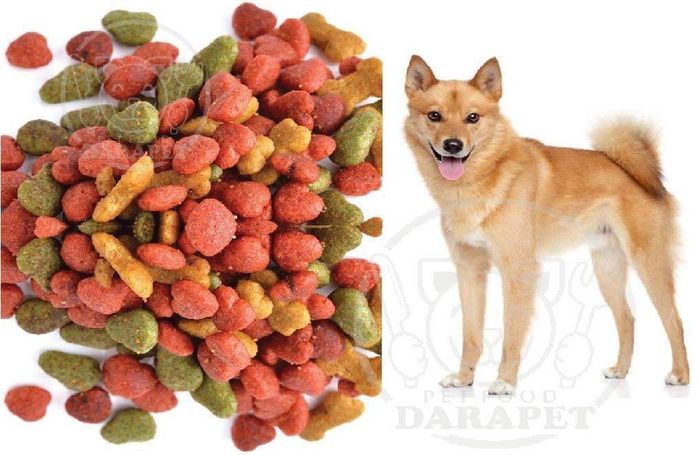 میزان کیفیت غذای خشک سگ